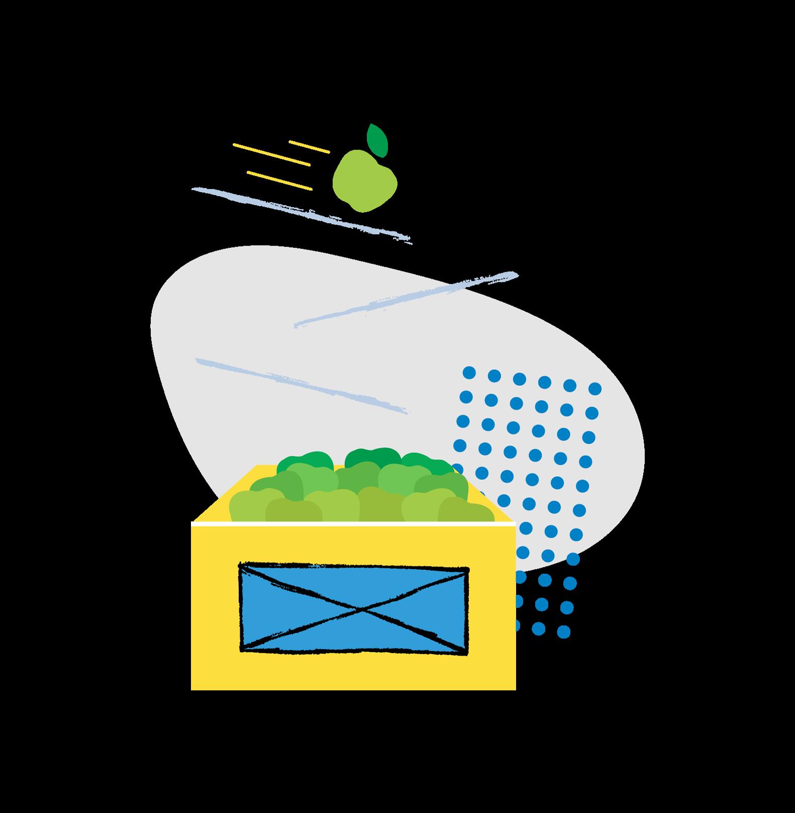 Food box illustration